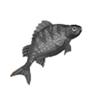 Ψαροταβέρνα ψαροταβερνα το λιμανι παλαια φωκαια